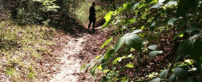 How to Hike Like a Boss